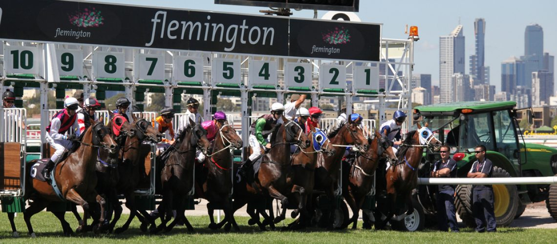 Melbourne,-,March,13:,Horses,Jump,From,The,Starting,Stalls